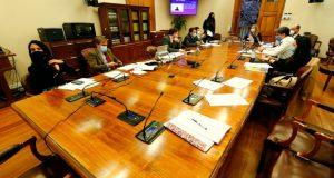 Comisión de Familia declara inadmisible veto presidencial a proyecto de Garantías de la Niñez